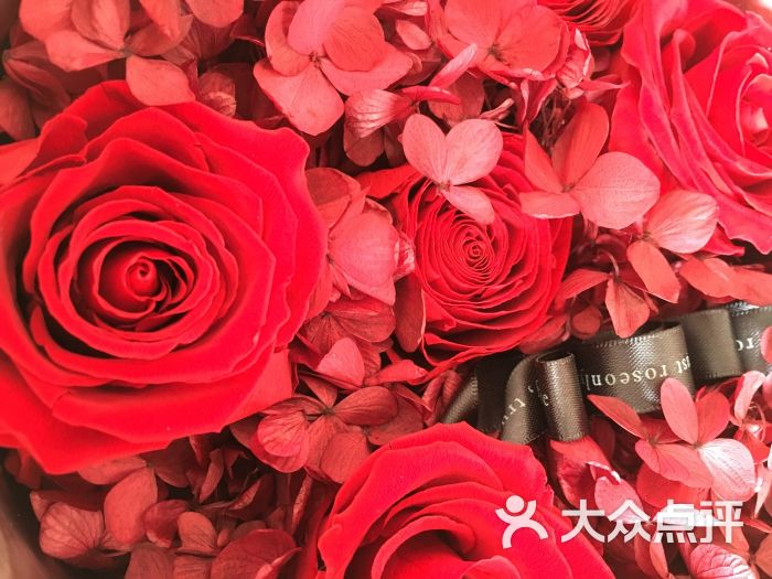 roseonly 壁纸