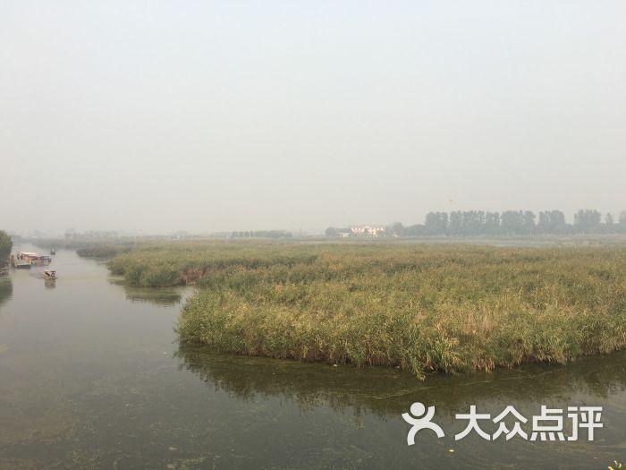 白洋淀风景区图片 - 第8张