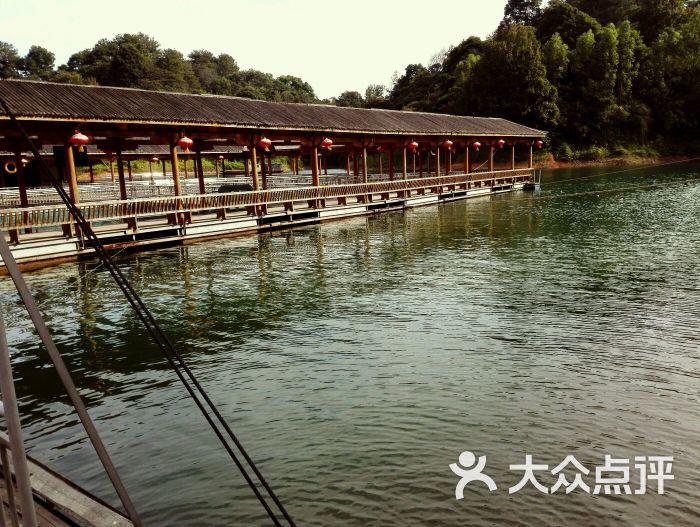 万绿湖龙凤岛图片 - 第6张