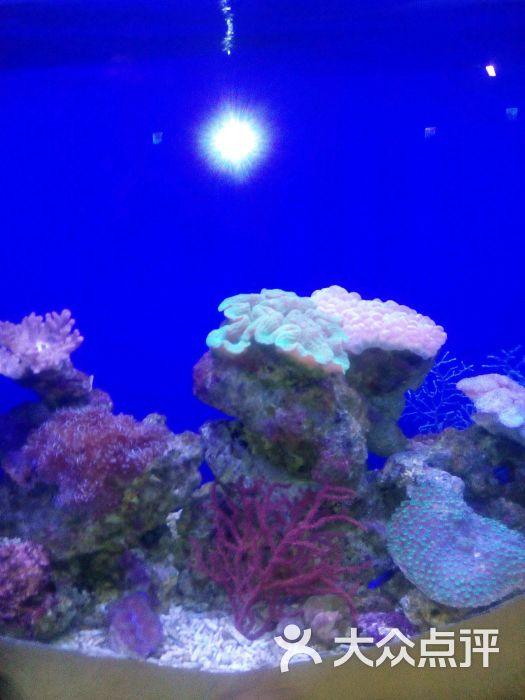 石家庄动物园海洋馆-图片-鹿泉市景点-大众点评网