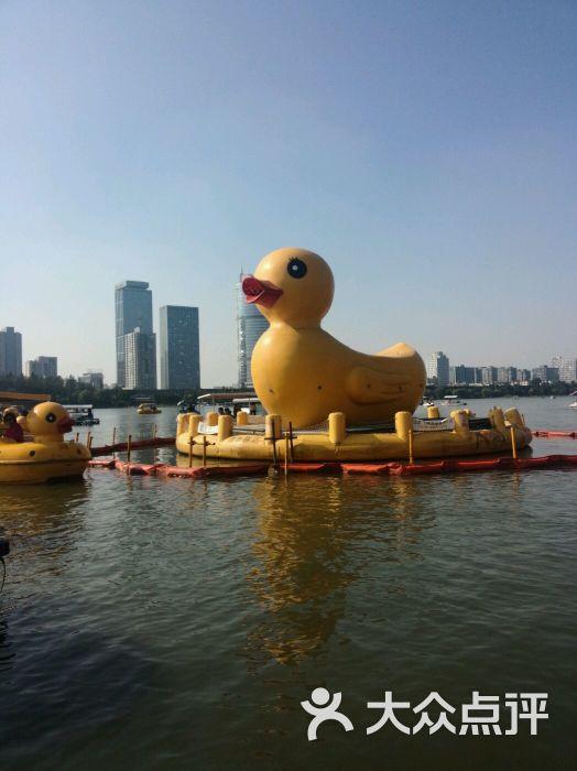玄武湖公园-忧伤的海绵的相册-南京景点-大众点评网