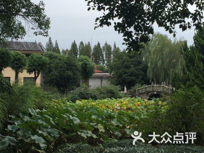 淀山湖日月岛度假村-图片-上海酒店-大众点评网