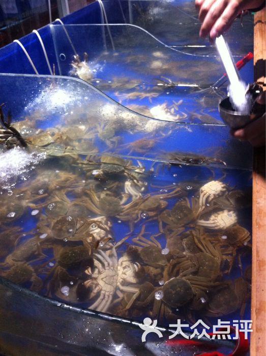 壁纸 海底 海底世界 海洋馆 水族馆 523_700 竖版 竖屏 手机